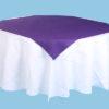 Purple Slip Cloths