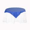 Blue Slip Cloths